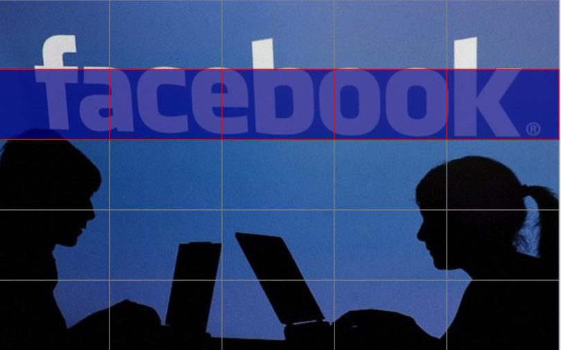 Facebook Izgara Aracı